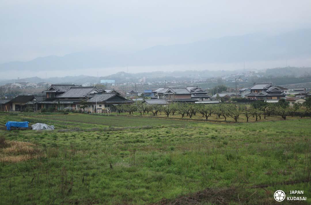 train-koyasan-1080